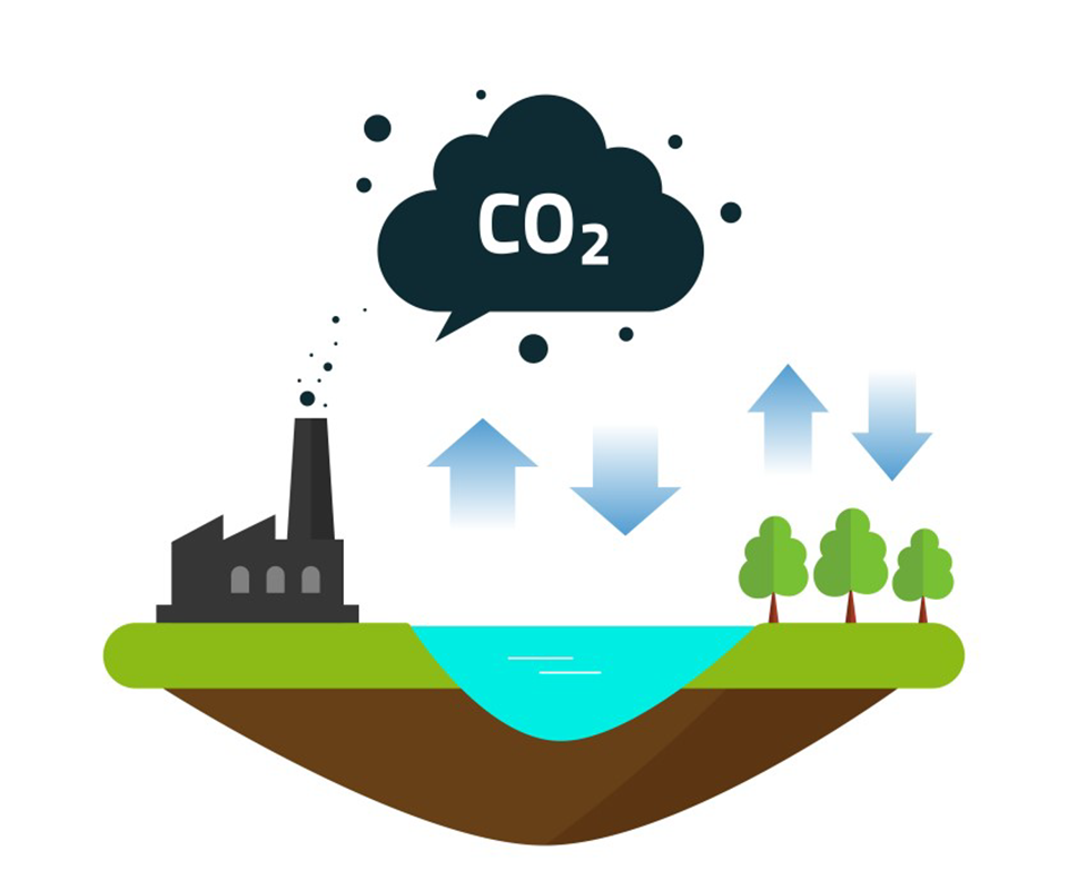 Biobe Co2 So2 rensing